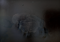 Zuzanna Skiba: Vulkan _schlafend Nr. 6. Öl / Teer auf Leinwand. 110 x 158cm. 2013